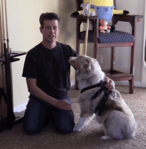 GoPro Fetch – Make Your Dog The Camera Pro?